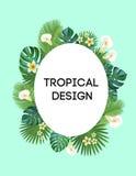 trame tropicale Carte postale de vecteur Illustration Stock