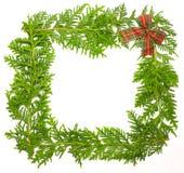 Trame verte de genévrier avec la décoration Photo libre de droits
