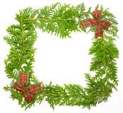 Trame verte de genévrier avec la décoration Images stock