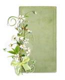 Trame verte de source avec des fleurs de cerise Photos libres de droits