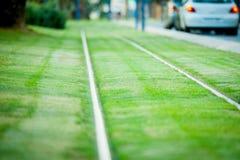 Trameisenbahnnahaufnahme verziert durch grünes Gras Lizenzfreies Stockfoto