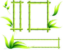 Trames en bambou Photo stock
