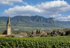 Tramin, Süd-Tirol, Trentino, Italien stockfotos