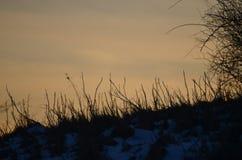 Tramonti semplici in NH nei campi Fotografia Stock Libera da Diritti