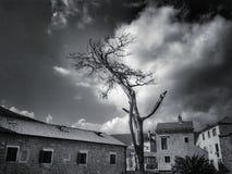 Tramonto Fotografie Stock