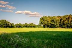 Tramonto ad un paesaggio olandese tipico Twente, Overijssel dell'azienda agricola di estate Fotografia Stock Libera da Diritti