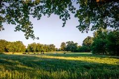 Tramonto ad un paesaggio olandese tipico Twente, Overijssel dell'azienda agricola di estate Fotografie Stock