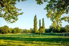 Tramonto ad un paesaggio olandese tipico Twente, Overijssel dell'azienda agricola di estate Immagini Stock
