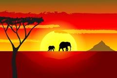 Tramonto africano illustrazione di stock