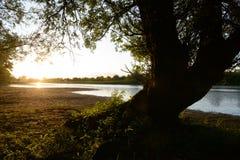 Tramonto al fiume vicino a Fortmond, Paesi Bassi di Ijssel Immagine Stock