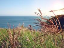 Tramonto al mare giapponese Paesaggio di ESTATE Fotografie Stock Libere da Diritti