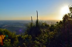 Tramonto al Mt Kiangarow nel parco nazionale di Bunya Fotografia Stock
