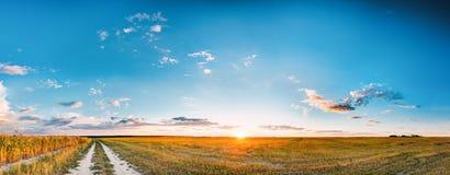 Tramonto, alba sopra il campo rurale del prato e strada campestre campagna Immagine Stock