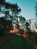 tramonto all'aperto Immagini Stock