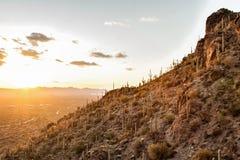 Tramonto alla montagna in Tucson AZ U.S.A. Immagini Stock Libere da Diritti
