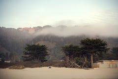 Tramonto alla spiaggia di Stinson in California che trascura Muir Forest Immagine Stock Libera da Diritti