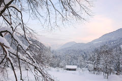 Tramonto alpino VII Fotografie Stock