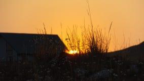 Tramonto arancio dorato nel Wyoming immagine stock libera da diritti