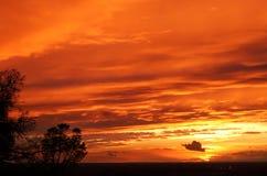 Tramonto arancione Fotografie Stock Libere da Diritti