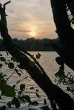 Tramonto attraverso gli alberi allo stagno Mittelteich di Brunswick fotografie stock libere da diritti