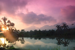 Tramonto in Bali Immagine Stock Libera da Diritti