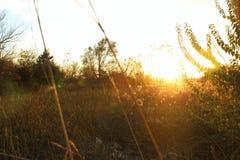 Tramonto basso di Kansas Fotografia Stock