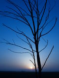 Tramonto blu Fotografia Stock