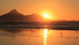 Tramonto a Cape Town Immagini Stock Libere da Diritti