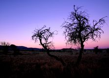 Tramonto centrale di Supermoon dell'australiano Fotografia Stock