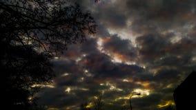 Tramonto in città con le nuvole e l'albero immagini stock