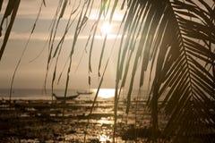 Tramonto con i fogli della palma e della barca Immagini Stock