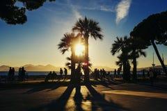 Tramonto con i toni dorati & chiarore del sole a Cannes Croisette Fotografie Stock Libere da Diritti