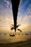 Tramonto con la palma e le barche sulla spiaggia tropicale immagine stock