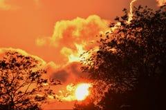 Tramonto con le nuvole arancio d'ardore Fotografia Stock Libera da Diritti