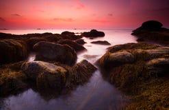 Tramonto con le rocce muscose ad una spiaggia Fotografie Stock