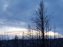 Tramonto congelato nell'Alaska immagini stock libere da diritti