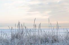 Tramonto dalla spiaggia, mare ghiacciato di inverno immagine stock
