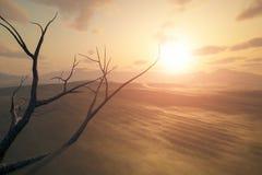 Tramonto del deserto illustrazione vettoriale