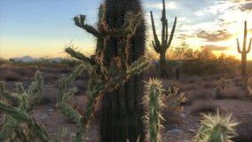Tramonto del deserto di Scottsdale Arizona