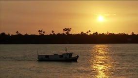 Tramonto del fiume della barca di Amazon stock footage