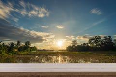 Tramonto del giacimento del riso e tavola di legno vuota per l'esposizione del prodotto e la m. Immagine Stock Libera da Diritti