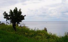 Tramonto del mare immagini stock libere da diritti