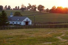 Tramonto dell'azienda agricola del cavallo Fotografia Stock Libera da Diritti