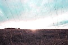 Tramonto della collina di Cleeve Fotografie Stock Libere da Diritti