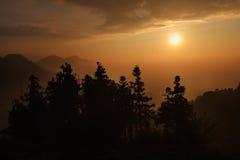 Tramonto della foresta della montagna Fotografia Stock Libera da Diritti