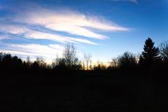 Tramonto della foresta della siluetta con le nuvole immagini stock