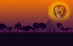 Tramonto della natura dell'Africa Immagini Stock