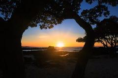 Tramonto delle Hawai della baia di Kealakekua immagini stock