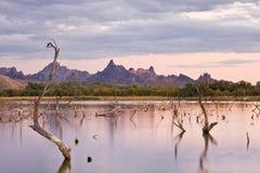 Tramonto delle montagne dell'ago fotografie stock libere da diritti