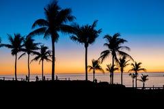 Tramonto delle palme alla spiaggia del cavo, Broome, Australia occidentale Immagine Stock